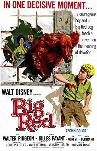 Big Red online film