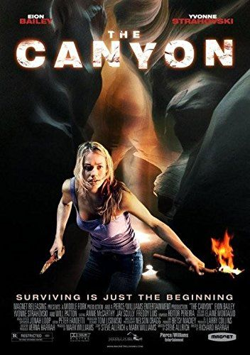 The Canyon online film
