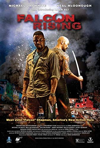 Falcon Rising online film