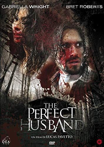 The Perfect Husband online film