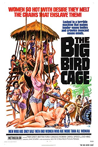 The Big Bird Cage online film