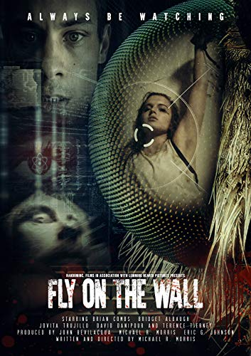 Fly on the Wall online film