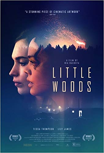 Little Woods online film