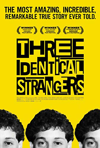 Three Identical Strangers online film